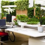 Revitalising Your Office Working Environment